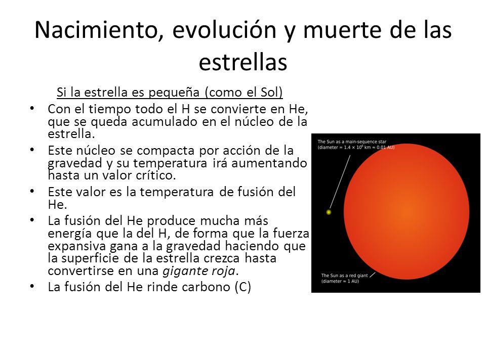 Nacimiento, evolución y muerte de las estrellas Si la estrella es pequeña (como el Sol) Con el tiempo todo el H se convierte en He, que se queda acumulado en el núcleo de la estrella.