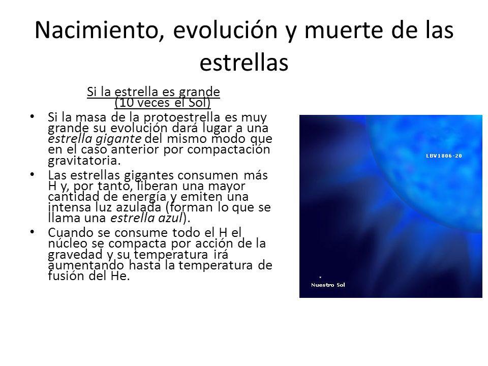 Nacimiento, evolución y muerte de las estrellas Si la estrella es grande (10 veces el Sol) Si la masa de la protoestrella es muy grande su evolución dará lugar a una estrella gigante del mismo modo que en el caso anterior por compactación gravitatoria.