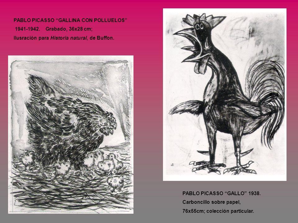 PABLO PICASSO GALLINA CON POLLUELOS 1941-1942. Grabado, 36x28 cm; Ilusración para Historia natural, de Buffon. PABLO PICASSO GALLO 1938. Carboncillo s