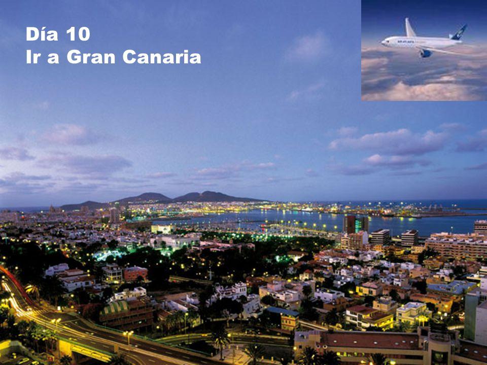 Día 10 Ir a Gran Canaria