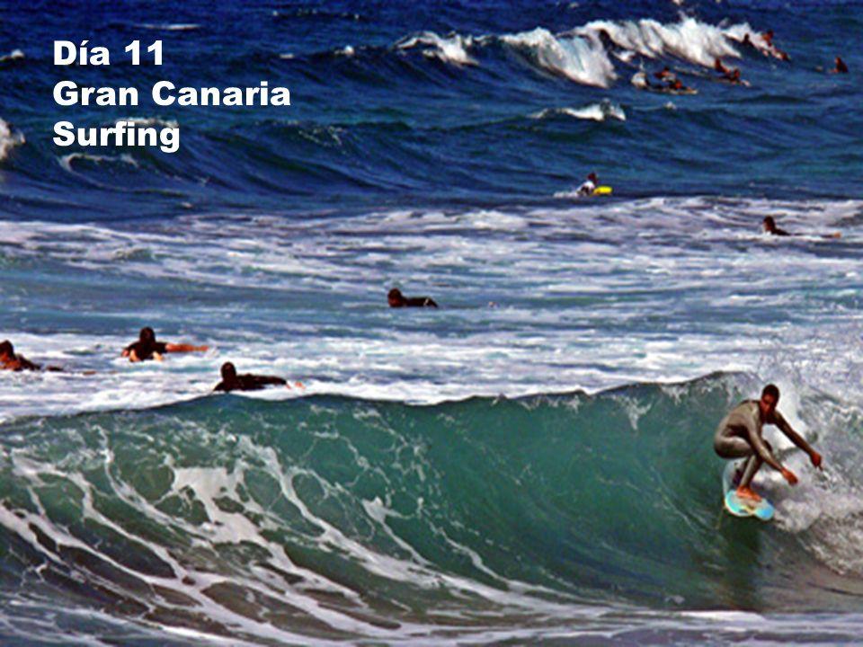 Día 11 Gran Canaria Surfing