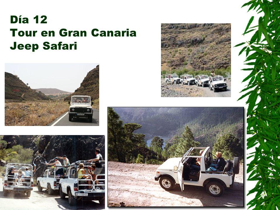Día 12 Tour en Gran Canaria Jeep Safari