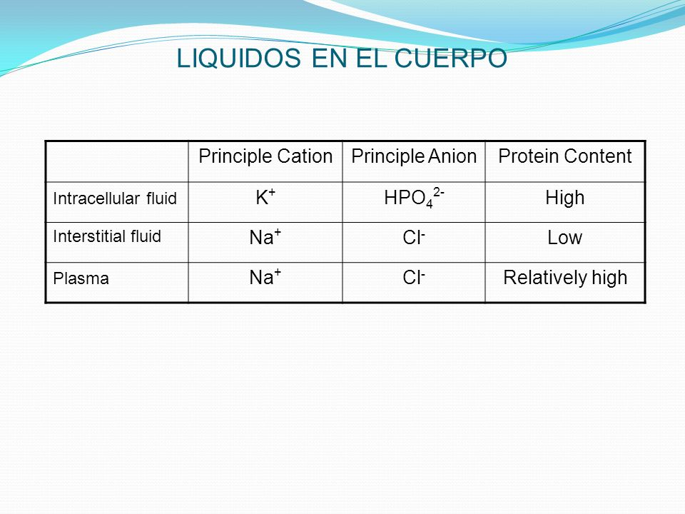 Principle CationPrinciple AnionProtein Content Intracellular fluid K+K+ HPO 4 2- High Interstitial fluid Na + Cl - Low Plasma Na + Cl - Relatively hig