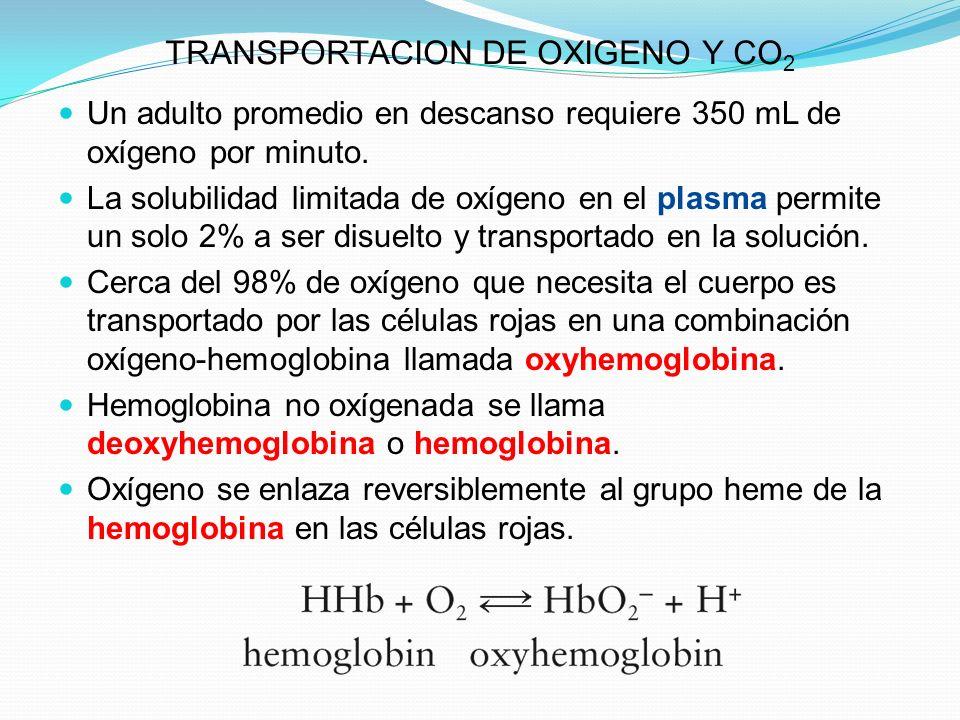 TRANSPORTACION DE OXIGENO Y CO 2 Un adulto promedio en descanso requiere 350 mL de oxígeno por minuto. La solubilidad limitada de oxígeno en el plasma