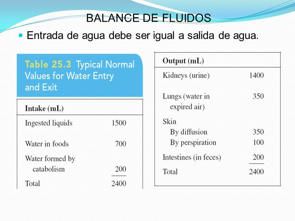 BALANCE DE FLUIDOS Entrada de agua debe ser igual a salida de agua.