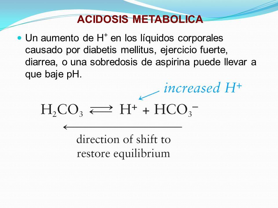 ACIDOSIS METABOLICA Un aumento de H + en los líquidos corporales causado por diabetis mellitus, ejercicio fuerte, diarrea, o una sobredosis de aspirin