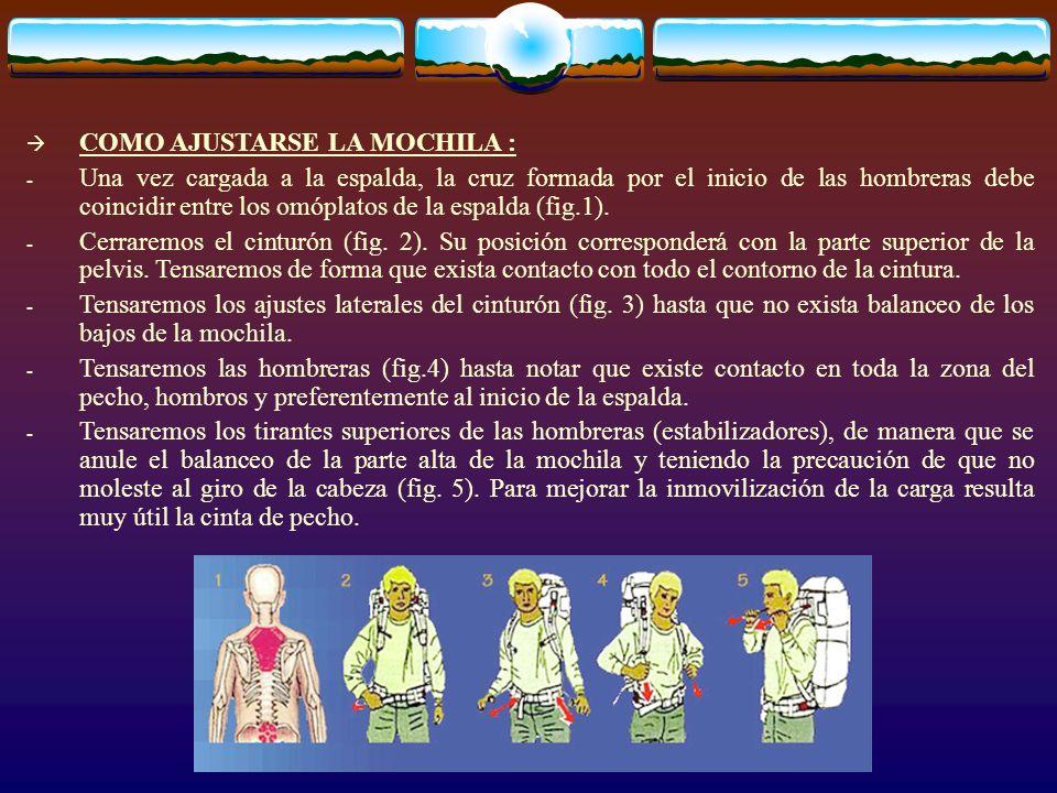 COMO AJUSTARSE LA MOCHILA : - Una vez cargada a la espalda, la cruz formada por el inicio de las hombreras debe coincidir entre los omóplatos de la es