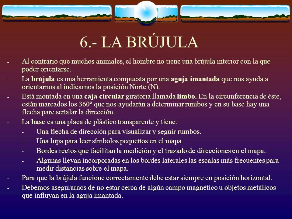 6.- LA BRÚJULA - Al contrario que muchos animales, el hombre no tiene una brújula interior con la que poder orientarse. - La brújula es una herramient