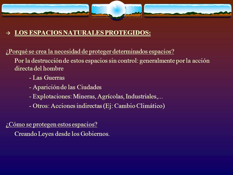 LOS ESPACIOS NATURALES PROTEGIDOS: ¿Porqué se crea la necesidad de proteger determinados espacios? Por la destrucción de estos espacios sin control: g