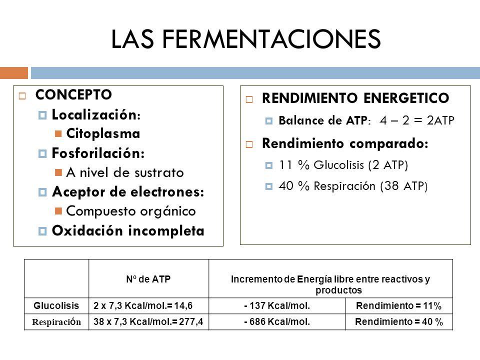 LAS FERMENTACIONES CONCEPTO Localización: C itoplasma Fosforilación: A nivel de sustrato Aceptor de electrones: Compuesto orgánico Oxidación incomplet