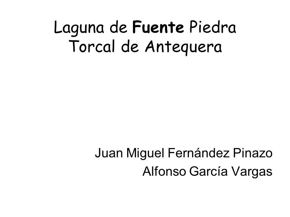 Laguna de Fuente Piedra Torcal de Antequera Juan Miguel Fernández Pinazo Alfonso García Vargas