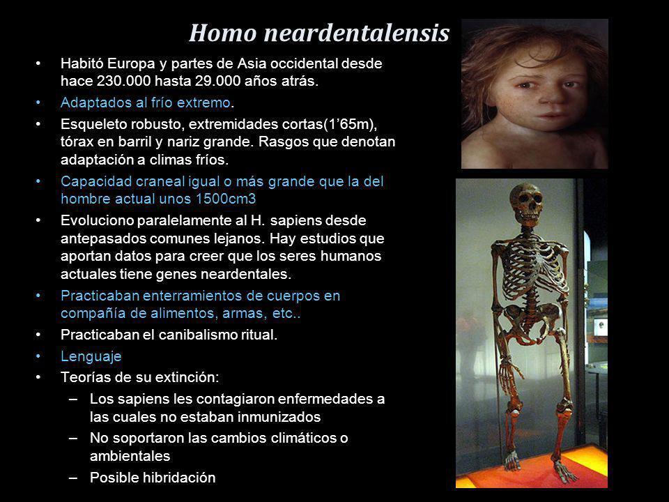 Homo antecessor Vivió en la tierra hace 800.000 años. Eran individuos altos (160-180cm) y fuertes (90kg los machos). Con una morfología facial similar