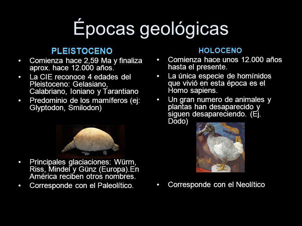 ¿Qué es el periodo del cuaternario? Es el último de los grandes periodos geológicos. Abarca desde hace 2,588 Ma. hasta el presente, dentro de la era d