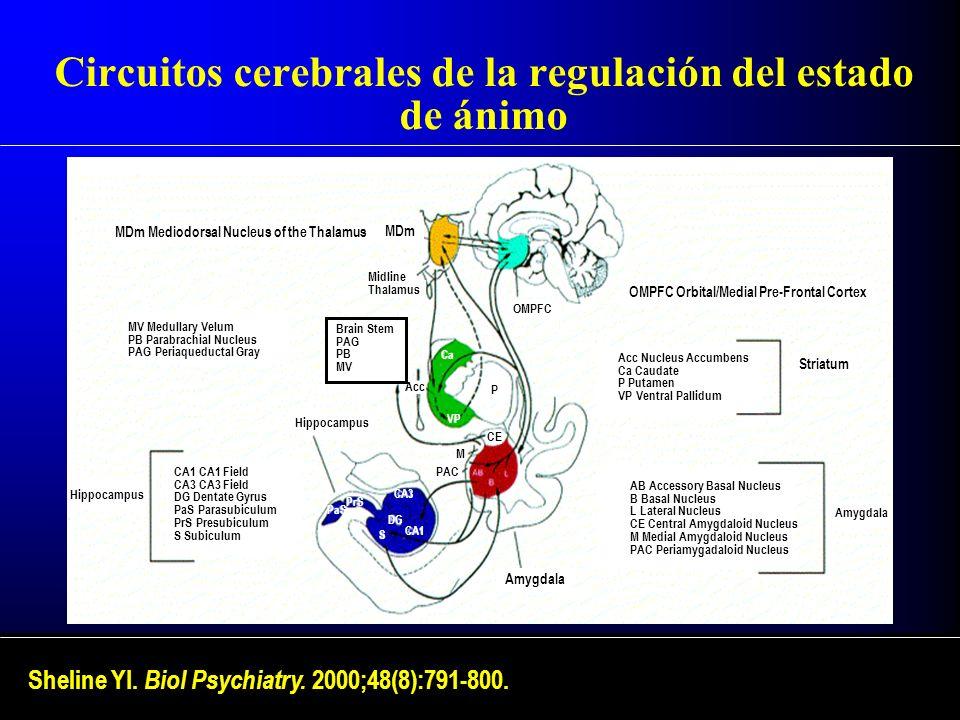 Circuitos cerebrales de la regulación del estado de ánimo Sheline YI. Biol Psychiatry. 2000;48(8):791-800. MDm Mediodorsal Nucleus of the Thalamus MDm