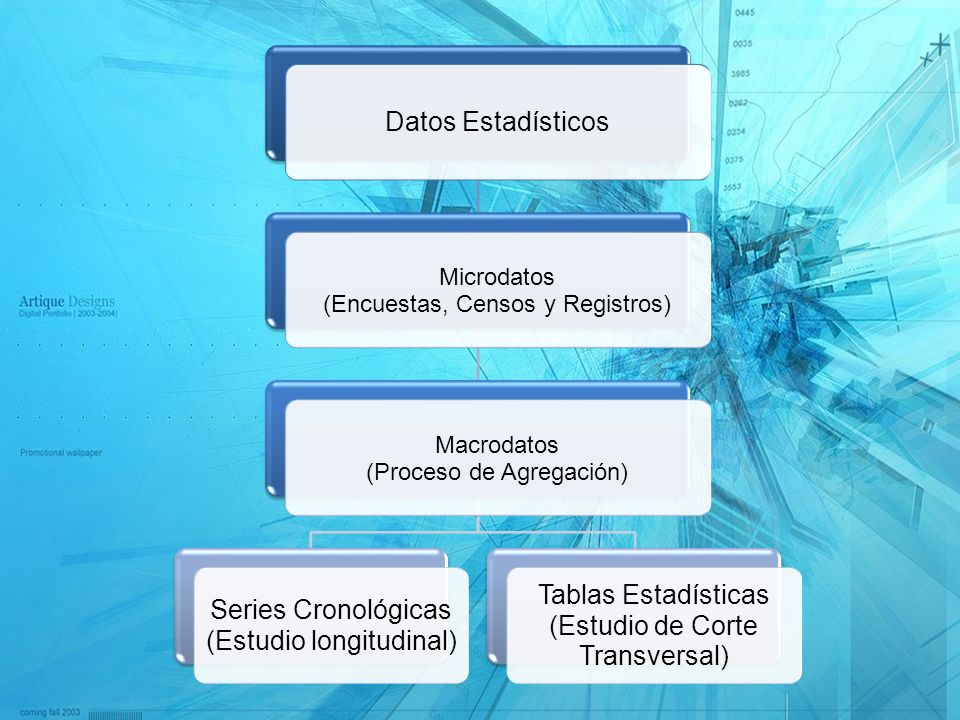 Datos Estadísticos Microdatos (Encuestas, Censos y Registros) Macrodatos (Proceso de Agregación) Series Cronológicas (Estudio longitudinal) Tablas Est