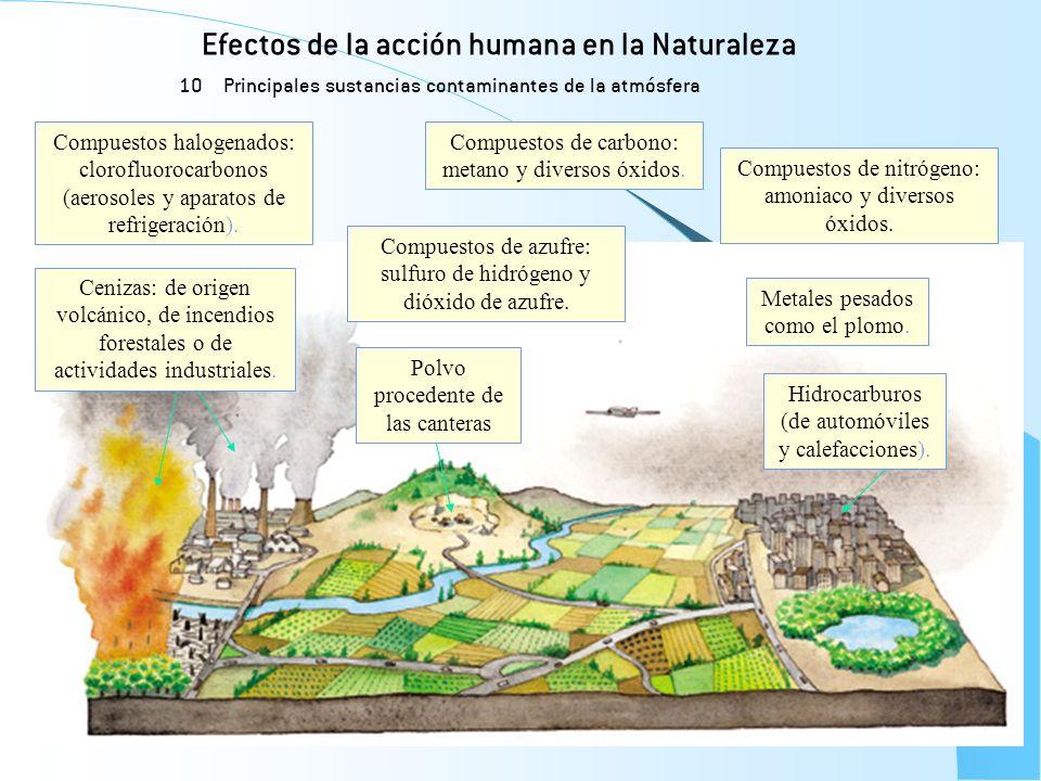 Efectos de la acción humana en la Naturaleza 10 Principales sustancias contaminantes de la atmósfera Metales pesados como el plomo. Compuestos de nitr