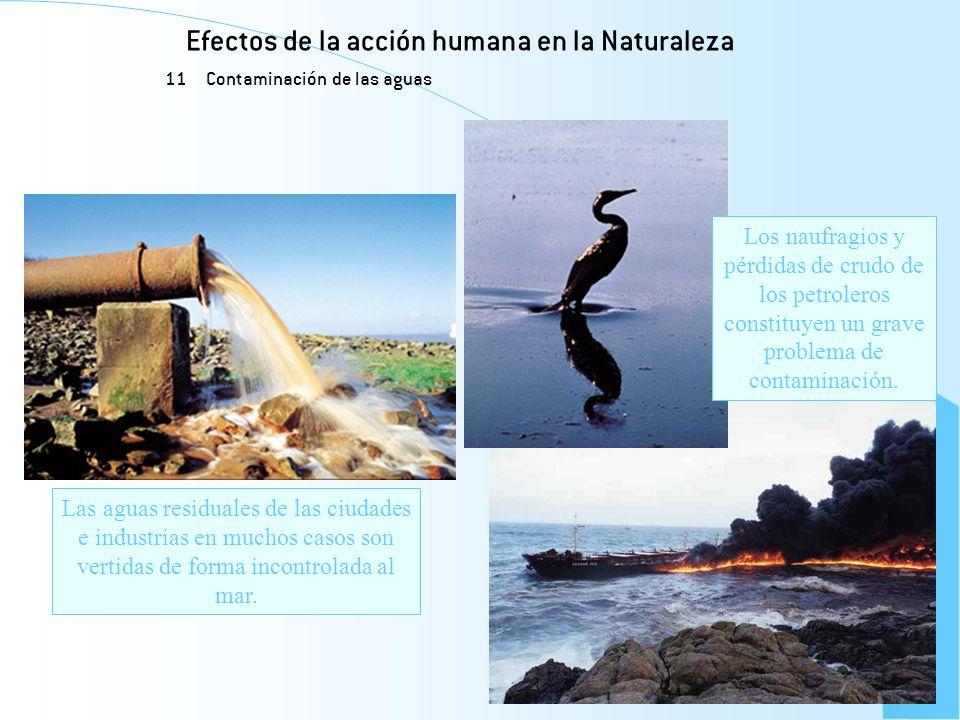 Efectos de la acción humana en la Naturaleza 11 Contaminación de las aguas Las aguas residuales de las ciudades e industrias en muchos casos son verti