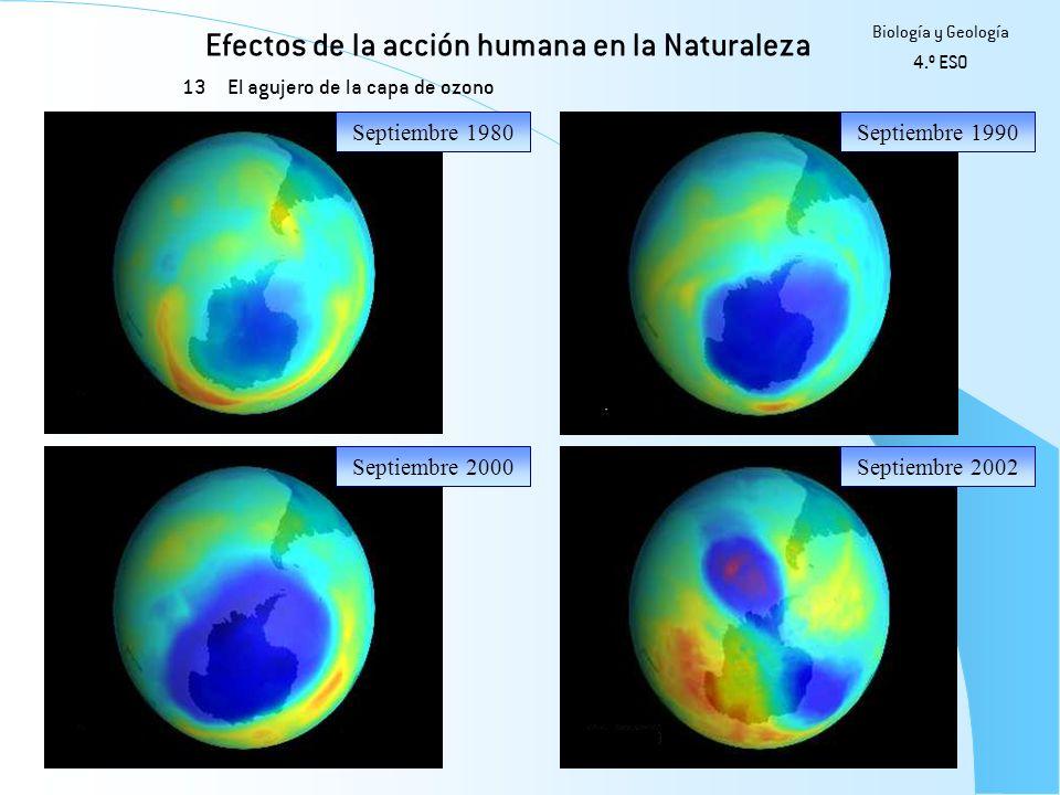 Efectos de la acción humana en la Naturaleza 13 Biología y Geología 4.º ESO El agujero de la capa de ozono Septiembre 1980Septiembre 1990 Septiembre 2