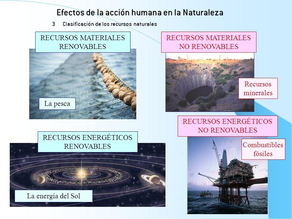 Efectos de la acción humana en la Naturaleza 3 Clasificación de los recursos naturales RECURSOS MATERIALES RENOVABLES RECURSOS ENERGÉTICOS RENOVABLES