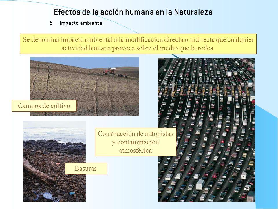 Efectos de la acción humana en la Naturaleza 5 Impacto ambiental Se denomina impacto ambiental a la modificación directa o indirecta que cualquier act