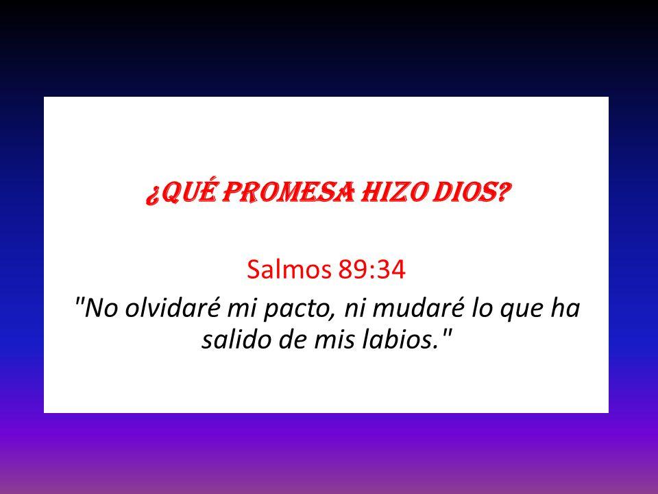 ¿Qué promesa hizo Dios? Salmos 89:34
