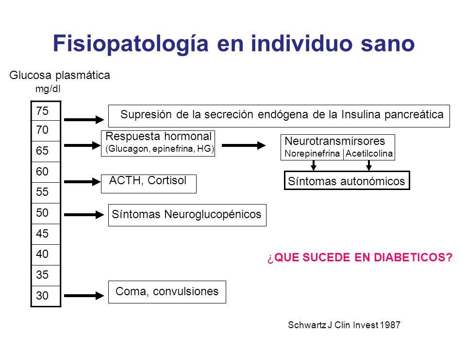 Fisiopatología en individuo sano 75 70 65 60 55 50 45 40 35 30 Glucosa plasmática mg/dl Supresión de la secreción endógena de la Insulina pancreática