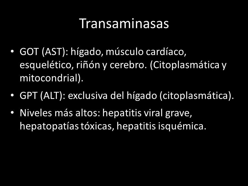 Transaminasas GOT (AST): hígado, músculo cardíaco, esquelético, riñón y cerebro. (Citoplasmática y mitocondrial). GPT (ALT): exclusiva del hígado (cit