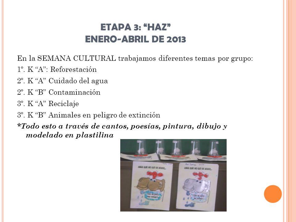 ETAPA 3: HAZ ENERO-ABRIL DE 2013 En la SEMANA CULTURAL trabajamos diferentes temas por grupo: 1º. K A: Reforestación 2º. K A Cuidado del agua 2º. K B
