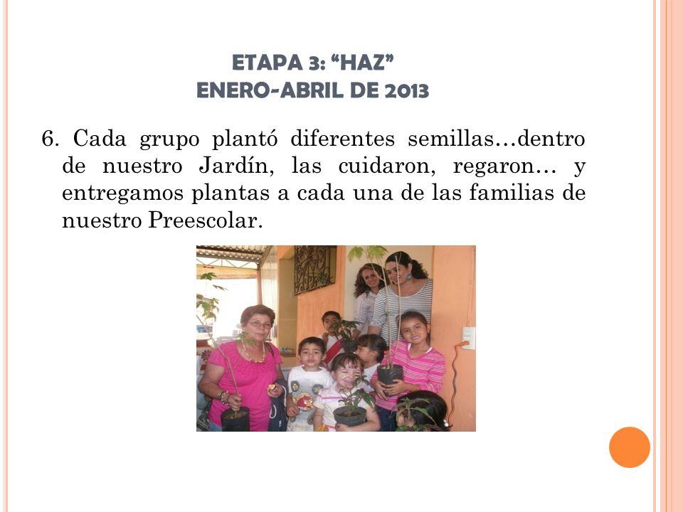 ETAPA 3: HAZ ENERO-ABRIL DE 2013 6. Cada grupo plantó diferentes semillas…dentro de nuestro Jardín, las cuidaron, regaron… y entregamos plantas a cada