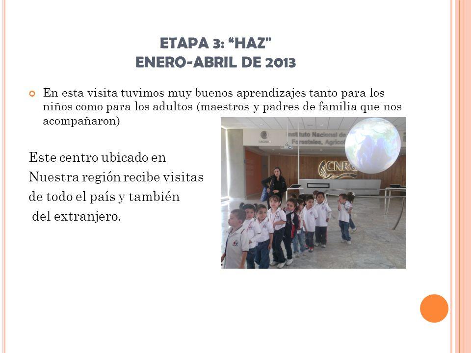 ETAPA 3: HAZ ENERO-ABRIL DE 2013 4.