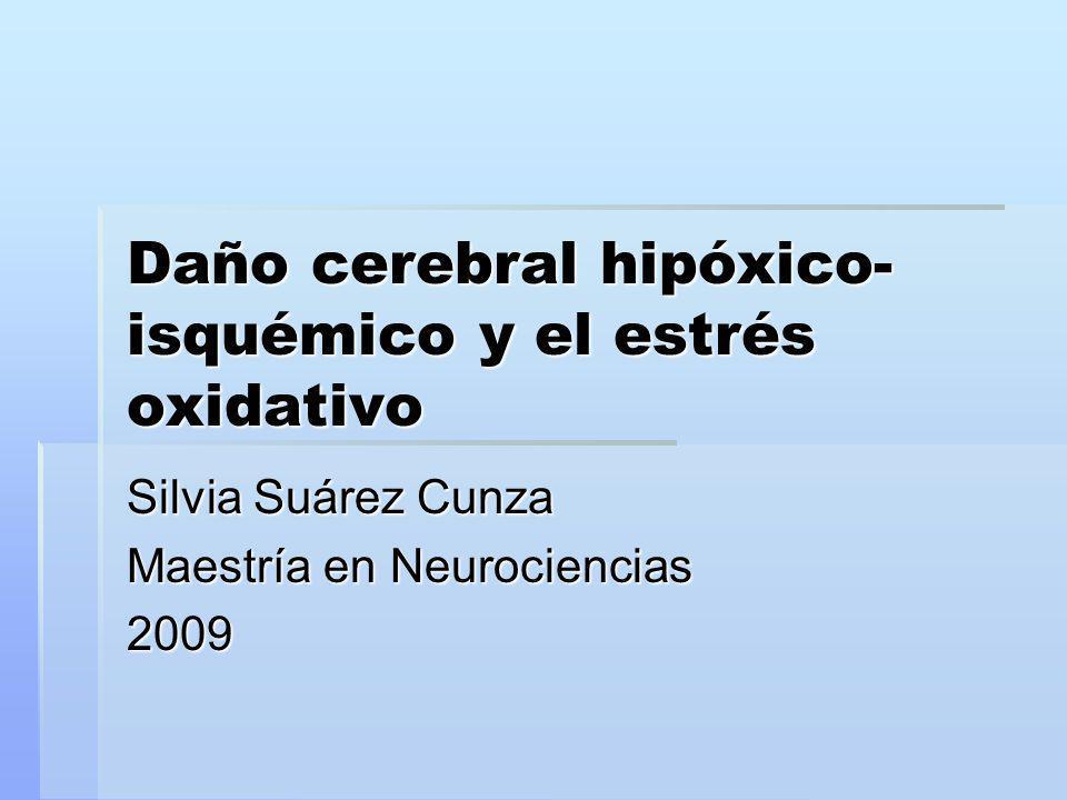 Daño cerebral hipóxico- isquémico y el estrés oxidativo Silvia Suárez Cunza Maestría en Neurociencias 2009