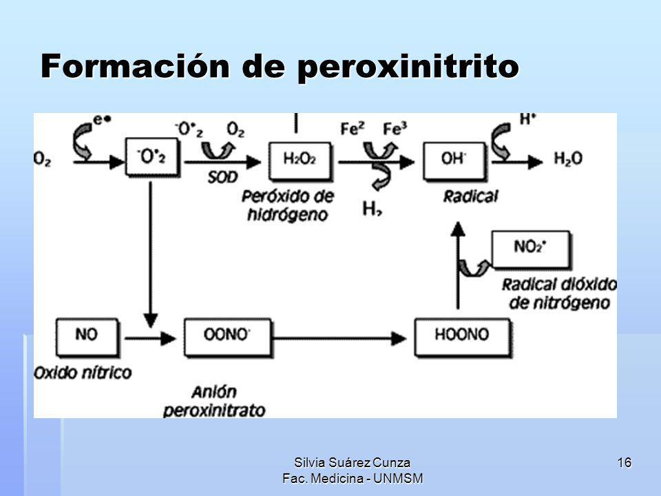 Silvia Suárez Cunza Fac. Medicina - UNMSM 16 Formación de peroxinitrito