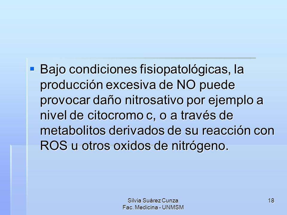 Silvia Suárez Cunza Fac. Medicina - UNMSM 18 Bajo condiciones fisiopatológicas, la producción excesiva de NO puede provocar daño nitrosativo por ejemp