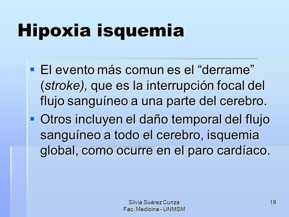Silvia Suárez Cunza Fac. Medicina - UNMSM 19 Hipoxia isquemia El evento más comun es el derrame (stroke), que es la interrupción focal del flujo sangu