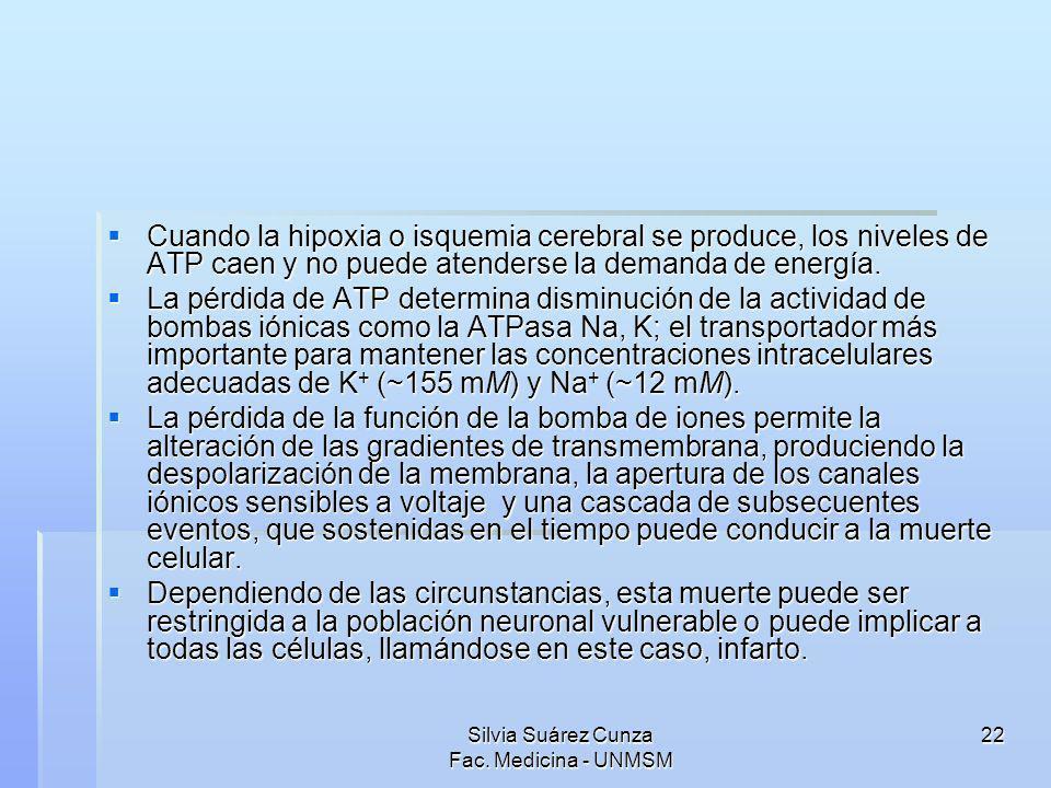 Silvia Suárez Cunza Fac. Medicina - UNMSM 22 Cuando la hipoxia o isquemia cerebral se produce, los niveles de ATP caen y no puede atenderse la demanda