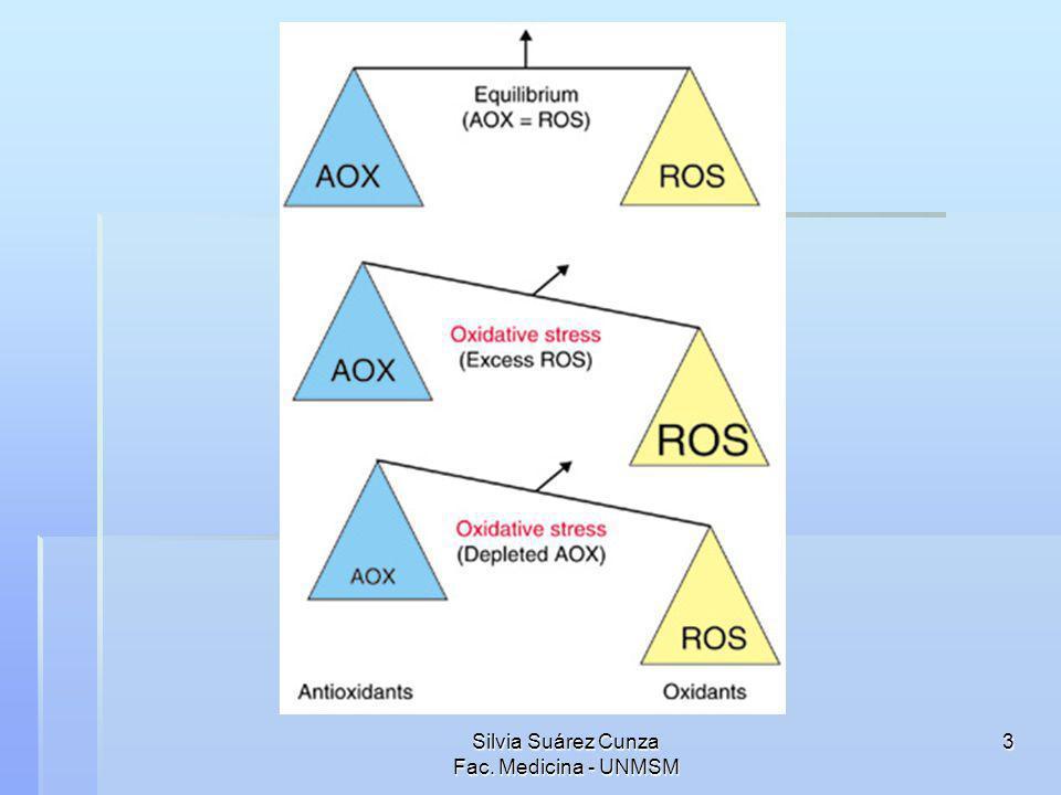 4 Estrés oxidativo Los metabolitos más importantes en el inicio del daño oxidativo a nivel del cerebro son los radicales libres superóxido y el óxido nítrico.