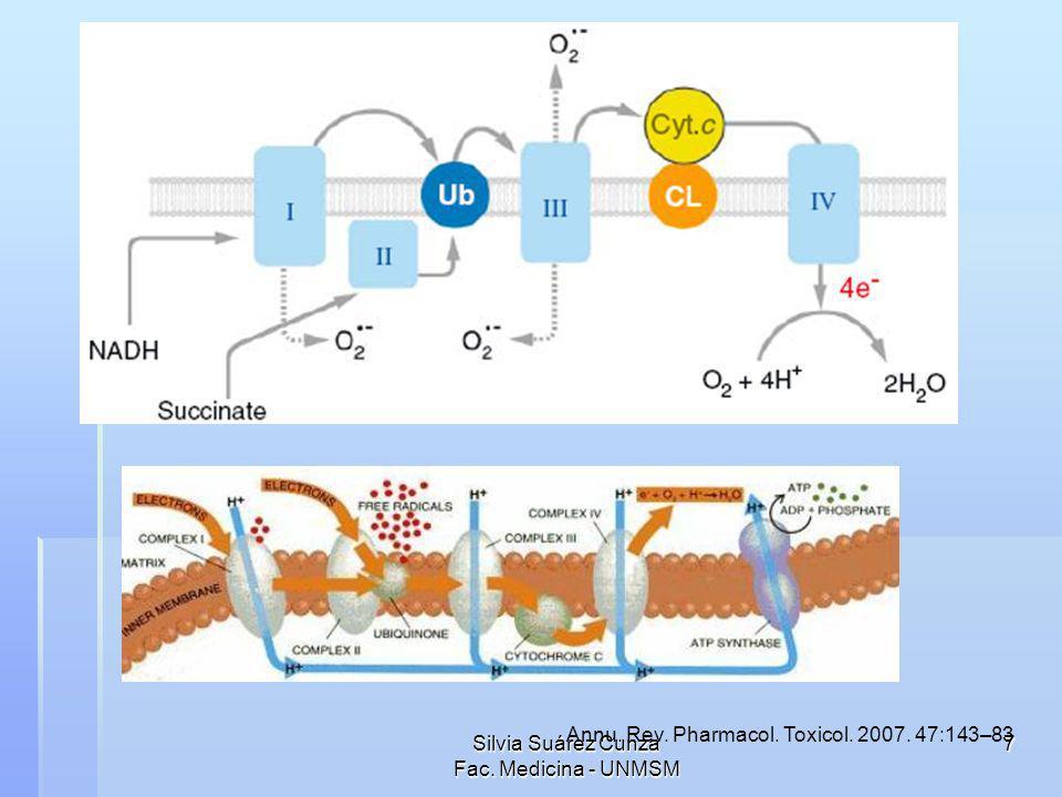 Silvia Suárez Cunza Fac. Medicina - UNMSM 8 Neuronal Nitric Oxide Synthase (nNOS)