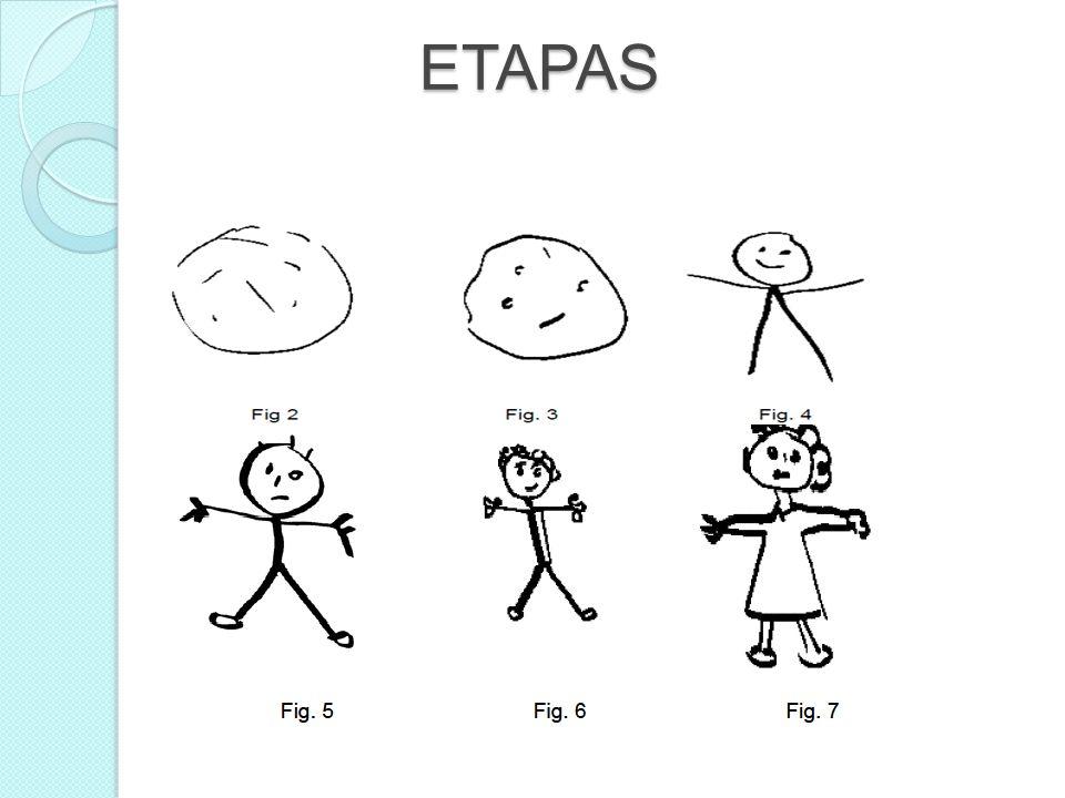 ETAPAS ETAPAS