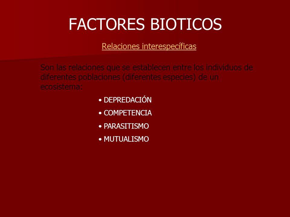 FACTORES BIOTICOS Relaciones interespecíficas Son las relaciones que se establecen entre los individuos de diferentes poblaciones (diferentes especies