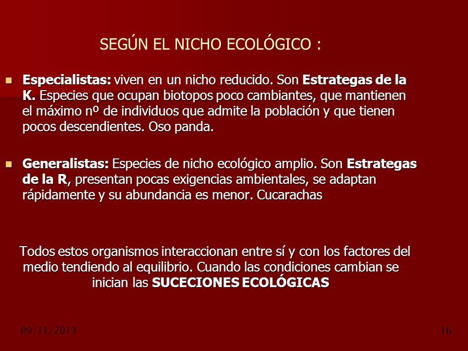 09/11/201316 SEGÚN EL NICHO ECOLÓGICO : Especialistas: viven en un nicho reducido. Son Estrategas de la K. Especies que ocupan biotopos poco cambiante