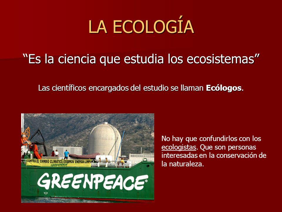 LA ECOLOGÍA Es la ciencia que estudia los ecosistemas Las científicos encargados del estudio se llaman Ecólogos. No hay que confundirlos con los ecolo