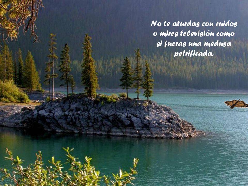 No te aturdas con ruidos o mires televisión como si fueras una medusa petrificada.