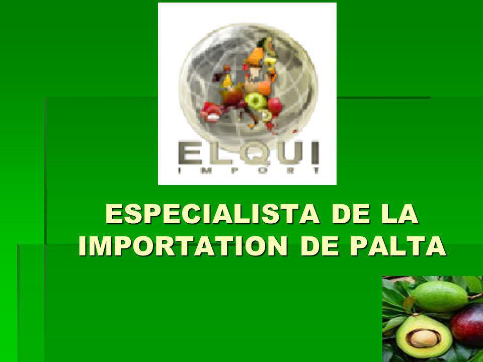 ESPECIALISTA DE LA IMPORTATION DE PALTA