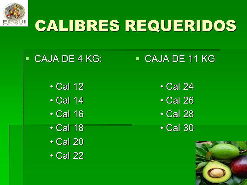 CALIBRES REQUERIDOS CAJA DE 4 KG: CAJA DE 4 KG: Cal 12 Cal 12 Cal 14 Cal 14 Cal 16 Cal 16 Cal 18 Cal 18 Cal 20 Cal 20 Cal 22 Cal 22 CAJA DE 11 KG CAJA