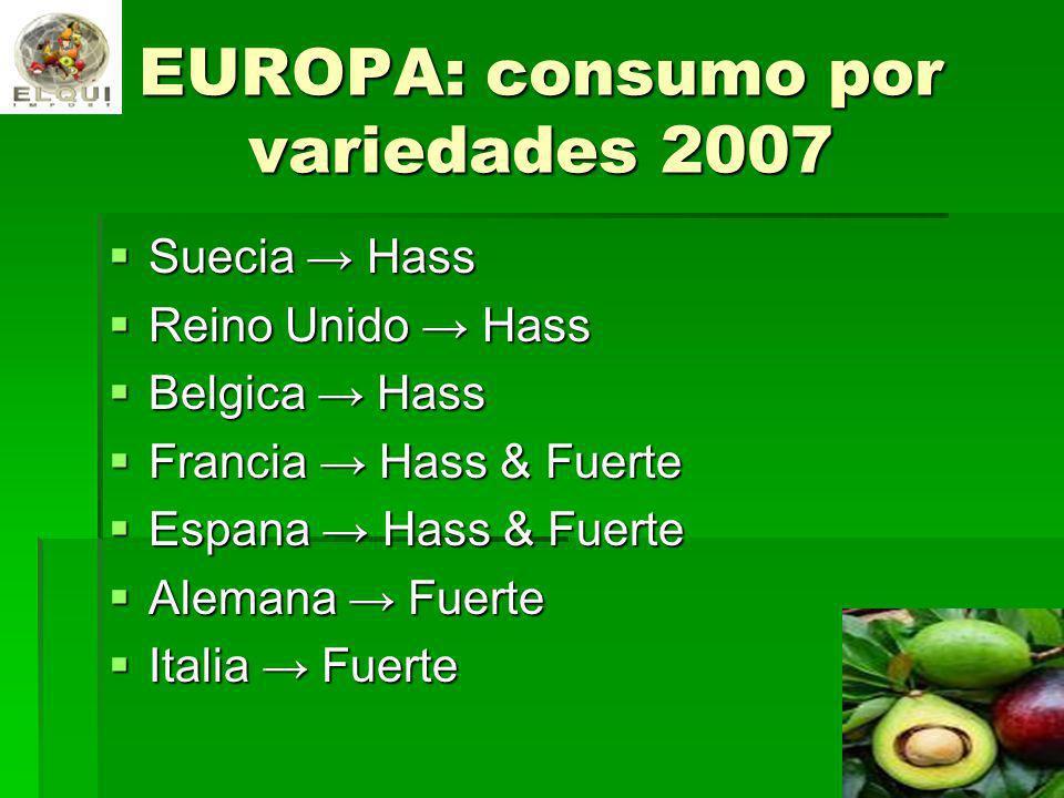 EUROPA: consumo por variedades 2007 Suecia Hass Suecia Hass Reino Unido Hass Reino Unido Hass Belgica Hass Belgica Hass Francia Hass & Fuerte Francia