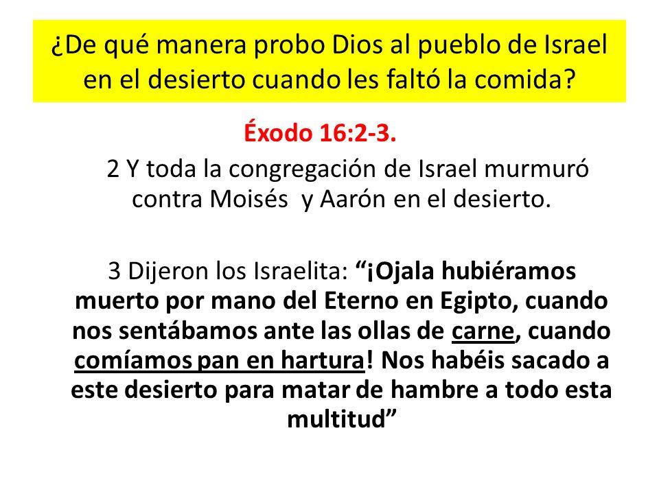 ¿De qué manera probo Dios al pueblo de Israel en el desierto cuando les faltó la comida? Éxodo 16:2-3. 2 Y toda la congregación de Israel murmuró cont