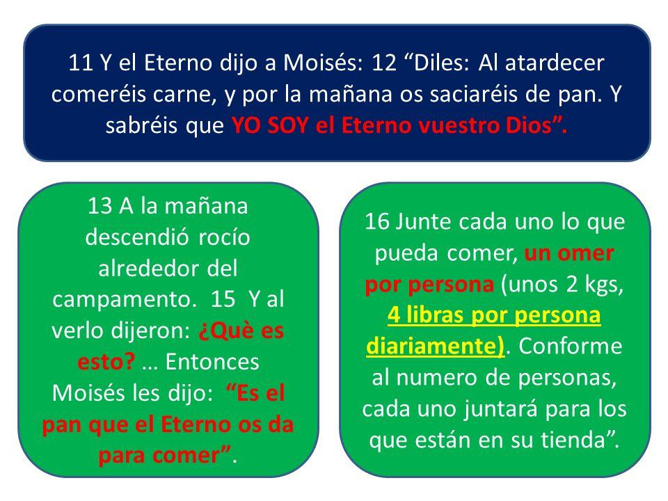 11 Y el Eterno dijo a Moisés: 12 Diles: Al atardecer comeréis carne, y por la mañana os saciaréis de pan. Y sabréis que YO SOY el Eterno vuestro Dios.