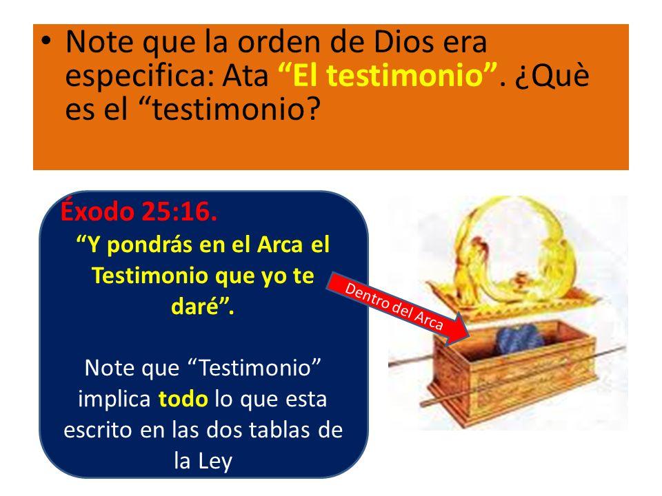 Note que la orden de Dios era especifica: Ata El testimonio. ¿Què es el testimonio? Éxodo 25:16. Y pondrás en el Arca el Testimonio que yo te daré. No