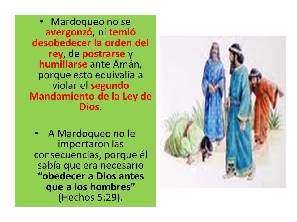 Mardoqueo no se avergonzó, ni temió desobedecer la orden del rey, de postrarse y humillarse ante Amán, porque esto equivalía a violar el segundo Manda