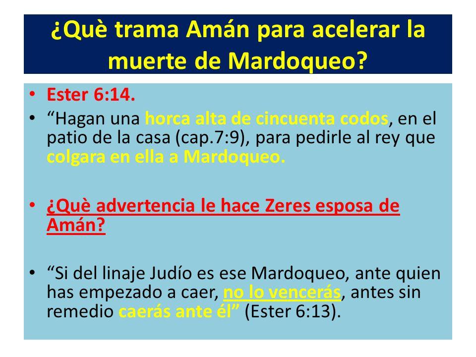 ¿Què trama Amán para acelerar la muerte de Mardoqueo? Ester 6:14. Hagan una horca alta de cincuenta codos, en el patio de la casa (cap.7:9), para pedi